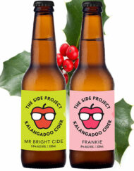 The Side Project Mixed Cider Christmas Pack